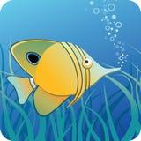 在水之下的珊瑚鱼 向量例证