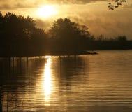 在水和森林的日落 免版税库存照片