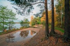 在水坑的反射 秋天横向 免版税库存图片