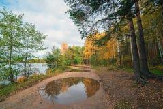 在水坑的反射 秋天横向 免版税库存照片