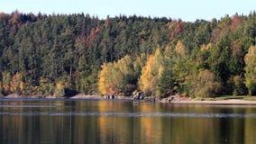 在水坝Rimov,捷克共和国的五颜六色的秋天叶子 股票视频