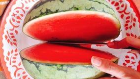 在水多的红色的西瓜 库存图片