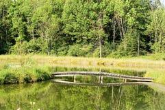 在水平的池塘的木桥- 免版税库存照片