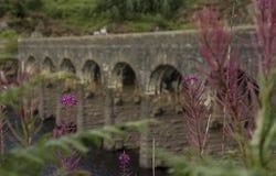 在水库的被成拱形的桥梁 免版税库存照片