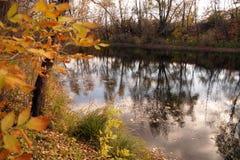 在水库的银行的秋天练习曲 免版税图库摄影