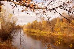 在水库的银行的秋天练习曲 库存照片