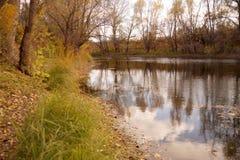 在水库的银行的秋天练习曲 免版税库存照片