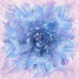 在水彩样式的抽象蓝色花 花卉青桃红色背景 对设计,纹理,盖子,明信片 库存照片