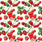 在水彩样式的樱桃狂放的果子样式 向量例证