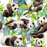 在水彩样式的热带竹树和熊猫样式 库存照片