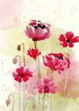 在水彩样式的美好的手画花卉背景 库存例证