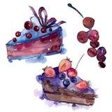 在水彩样式的鲜美蛋糕 r r 向量例证