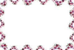 在水彩的花卉框架 免版税库存图片