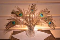 在水晶花瓶的明亮的五颜六色的羽毛 图库摄影