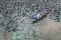 在水池中间的老生锈的船 库存图片