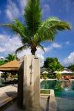 在水池和棕榈树旁边的室外阵雨 免版税库存图片