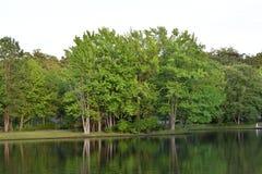在水池的一个春日 库存图片