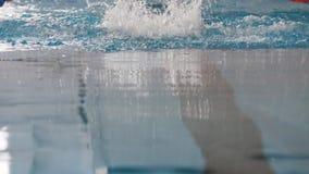 在水池的专业游泳者游泳速度的 股票视频