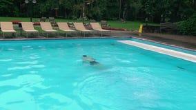 在水池的年轻人游泳 影视素材