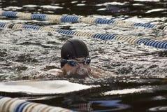 在水池的游泳竞争 图库摄影