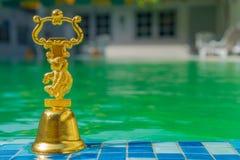 在水池的背景的一份旅行纪念品 免版税库存图片