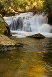 在水池的金黄反射在东部叉子瀑布前面在秋天的北卡罗来纳 库存图片