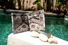 在水池背景的现代辅助部件 皮革snakeskin Python钱包 时兴的自然Python 对于男人和妇女 里面  库存照片