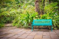 在水泥砖地板上的一条明亮的蓝色长凳与美好的绿色 免版税库存图片