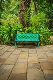 在水泥砖地板上的一条明亮的蓝色长凳与美好的绿色 库存照片