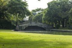 在水的桥梁在公园 图库摄影