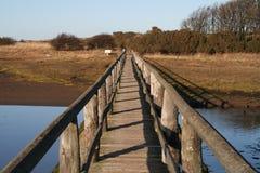 在水的桥梁 免版税库存图片