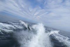 在水的跟踪 库存图片