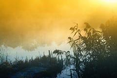 在水的雾 免版税库存照片