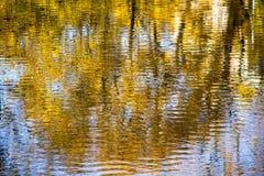 在水秋叶的下落的反射 图库摄影