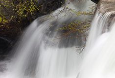 在水秋天的仔细的审视在优胜美地国立公园 免版税图库摄影