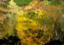 在水背景反映的秋天颜色 库存照片