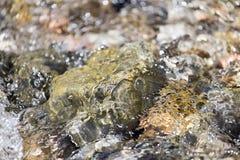 在水自然的石头 免版税库存图片