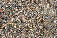 在水表面照片背景下的小小卵石小卵石 库存照片