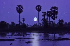 在水领域的蓝色满月夜 免版税库存图片