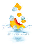 在水飞溅的成熟桃子 免版税库存图片