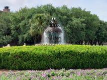 在江边的喷泉在查尔斯顿 库存图片