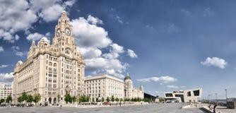 在江边的皇家肝脏大厦在利物浦 库存图片