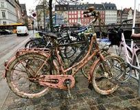 在江边的老桃红色自行车在五颜六色的房子背景的哥本哈根  免版税库存照片