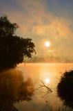 在池塘上的日出 库存照片