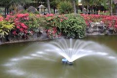 在池塘中间的喷泉 库存图片