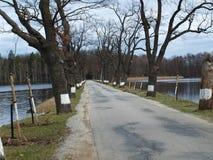 在池塘之间的老沿途有树的路 免版税库存照片