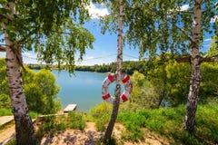 在池塘海滩的Lifebuoy 免版税库存照片