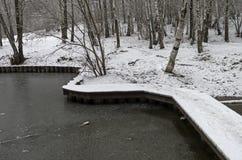 在池塘的人行桥 晚秋天,底11月 免版税库存图片