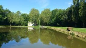 在池塘的反射 库存照片
