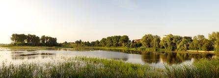 在池塘的岸的晚上 免版税库存照片